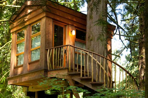 new book from treehouse masters star explores tree house design
