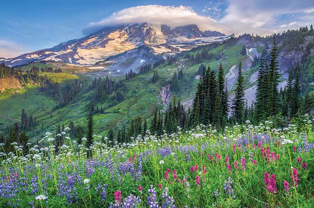 Best Nature Places Near Seattle