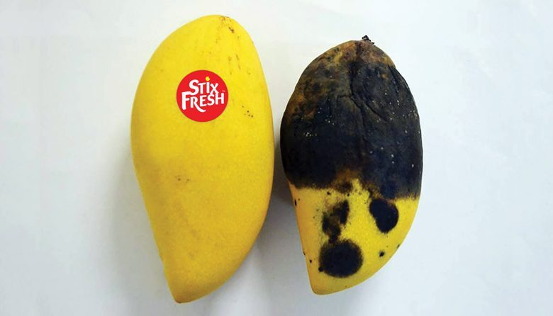 Mangos, both the same age, with and without the pioneering StixFresh produce label