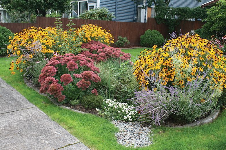 Environment friendly rain gardens transformed this for Rain garden design