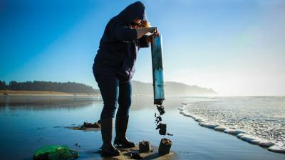 Washington state's razor clamming season