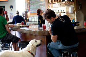 Woodinville Brewery Dog Friendly